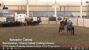 Cutting Horse Central